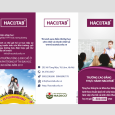 in-to-roi-to-gap-flyer